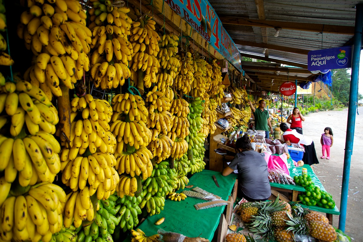 Fruit Stand in San Pedro Sula, Honduras