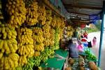 Fruit Stand in San Pedro Sula, Honduras