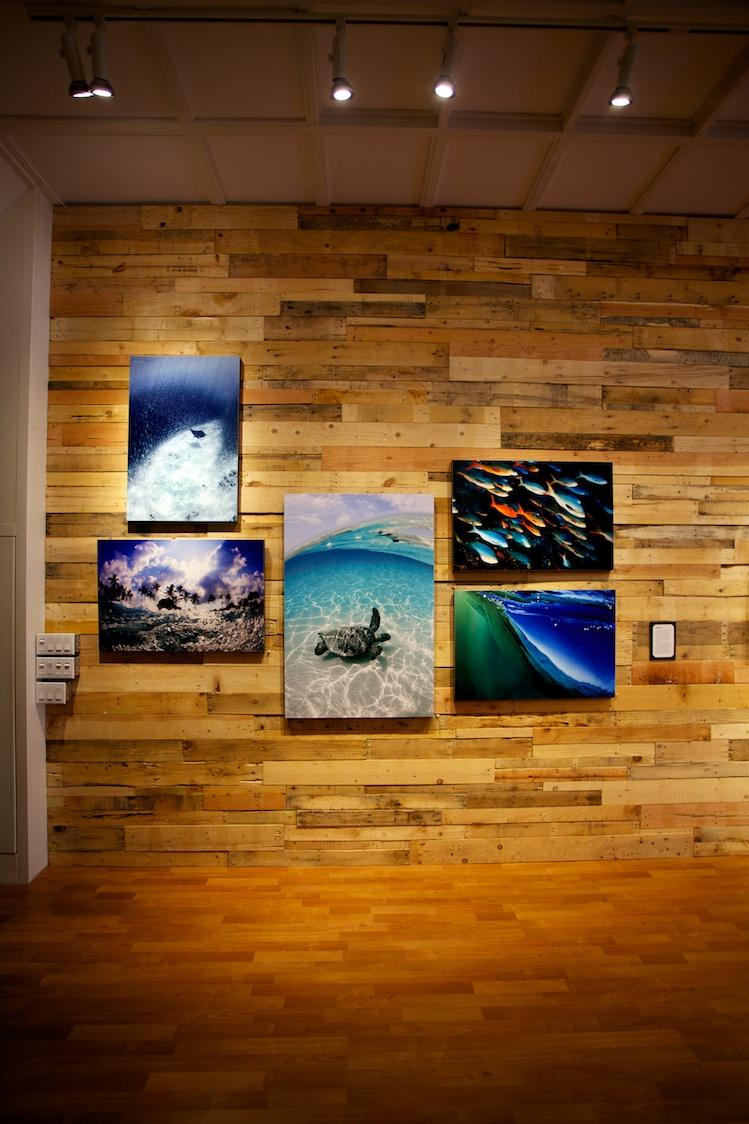 Gallery mELD - Kona, Hawaii