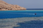 Southern Red Sea, Egypt