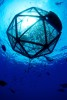 Underwater Aquapod in Hawaii, Floating Fish Farm