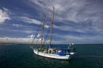 Escort Boat