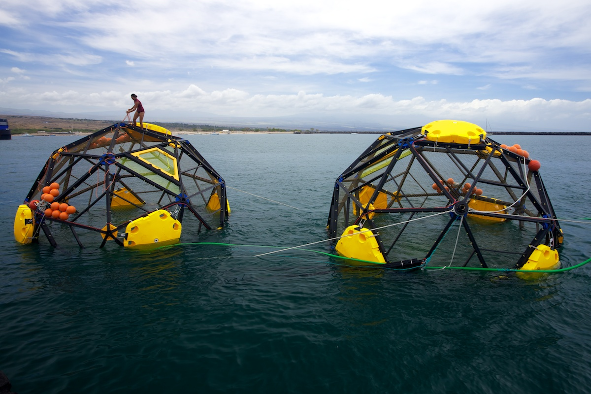 Aquapods leaving harbor in Hawaii