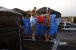 Loading of fish into totes to go out to sea