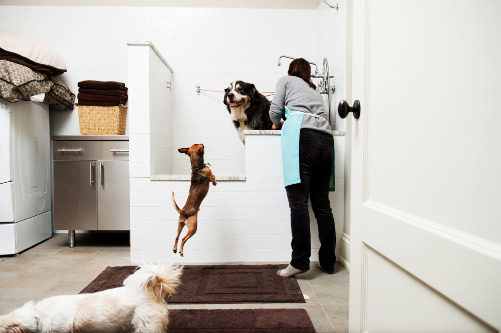 Julie Greco washes Howard, a Bernese Mountain Dog, in a built in dog washing station that has a professional quality sprayer while their Chihuahua, Bongo jumps around in her new home with dog-oriented features Monday, Dec. 23, 2013, in Chicago, IL. Rob Hart for The Wall Street Journal