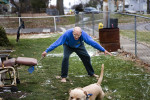 County Commissioner Frank Thompson chases his dog around his yard attempting to put a leash around him.  Mike, a 100-pound beast of a pit bull-Labrador mix, once jumped through the living room window at the sight of the neighbor's cat. Thompson, 82, was elected in November to his fourth consecutive term on the Kalamazoo County Board of Commissioners. Thompson is full of eccentricities that make him stand out on the county board. {quote}He endeared himself to us,{quote} says Vice Chairwoman Deb Buchholtz-Hiemstra. {quote}He's out in his community all the time, talking to his neighbors. You can just tell there's a lot of emotion in what he says and what he brings to the board.{quote}