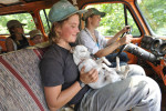 Honorable Mention | Feature Photo Story Erin Brethauer, Asheville Citizen-TimesFlying Cloud Farm intern Anna Long holds one of the farm's feist mountain dogs while driving to the blackberry patch.