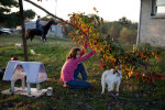 Student Photographer of the YearSpencer Bakalar, UNC-Chapel HillRachel Coomer, 12, feeds Chloe, her pet goat, leaves from a maple tree in the front yard, while her brother, Logan, rides the family horse.