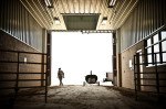 Third Place | General NewsAndrew Craft, The Fayetteville ObserverEarnest Roberts walks out of the new pavilion at the Southeastern N.C. Agricultural Center in Lumberton as he helps prepare for his family reunion at the pavilion. The 55,000-square-foot multi-purpose pavilion opened in April. The pavilion is the result of two decades of work to establish a local facility capable of providing equestrian and livestock events, but as of right now the center has no money to install 100 or so stalls which are needed to make the facility a success.