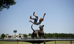 First Place | FeatureJames Robinson, The Fayetteville ObserverBrayden Coleman, 14, tries to get his dog, Dave, to jump with him on the trampoline behind his home in Lumber Bridge Friday afternoon. His dog is know for jumping on the trampoline.JUDGES COMMENTS: nice and wacky