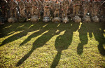 POY: Runner UpAndrew Craft, Fayetteville ObserverParatroopers with the 82nd Airborne Division line up for a basic airborne refresher course Monday, Sept. 10, 2012, on Fort Bragg, N.C. Most of the paratroopers had just returned a month prior from a deployment in Afghanistan.
