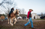 Second Place | Multiple PhotosJames Nix, Independent TribunePastor Jeff Smith leads Big Jed around for visitors to ride on prior to the Cowboy Church Central Station service on December 6, 2013.