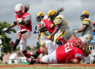 Second Place | SportsMelissa Melvin-Rodriguez, Carolina PanthersJudges Comments: Second place is a touchdown photo any photographer could be happy with. The player on the ground in the front and the hair flying on the other players are only a few reasons we love this image. Also, we appreciate the photographer taking the chance to get this low with a wider lens during a touchdown play.Winston-Salem State's Maurice Lewis jumps into the end zone for a touch down in the second quarter of the homecoming game against Johnson C. Smith University at Bowman Gray Stadium on Saturday, October 11, 2013. Winston-Salem State defeated Johnson C. Smith 44-17, which helped secure a number one ranking in the CIAA.