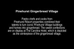 Second Place | Multiple PhotosTimothy Hale, FreelancePinehurst Gingerbread Vilage