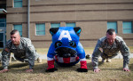 Third Place | Multiple PhotosMelissa Melvin-Rodriguez, Carolina PanthersSir Purr participates in a push-up contest with two Drill Sergeants during a visit by the Carolina Panthers to Fort Jackson in Columbia, SC, on Tuesday, November 12, 2013.