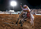 Sports Photographer of the Year Jerry Wolford, News & Record (Greensboro)A trail of bull snot hangs in the air as California King gives cowboy Brandon Chambers a wild five second ride.