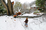 Third Place | Spot NewsGerry Melendez, The StateComments from the judges: The photographer brings several elements together including the downed tree branches and the body language of the little girl that shows this is an unusual ocurance. Gaby McDuffie walks by the large limbs that fell of a tree on Pinewood Drive and Fulton Street in Columbia, SC, Thursday, February 13, 2014.