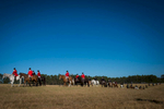 Second Place | Multiple PhotosSara Corce, The PilotHorses and riders with the non-jumping flight cross the field to their path during the Thanksgiving Day Moore County Hounds Annual Opening meet at Buchan Field off North May Street on November 26, 2015 in Southern Pines, North Carolina.