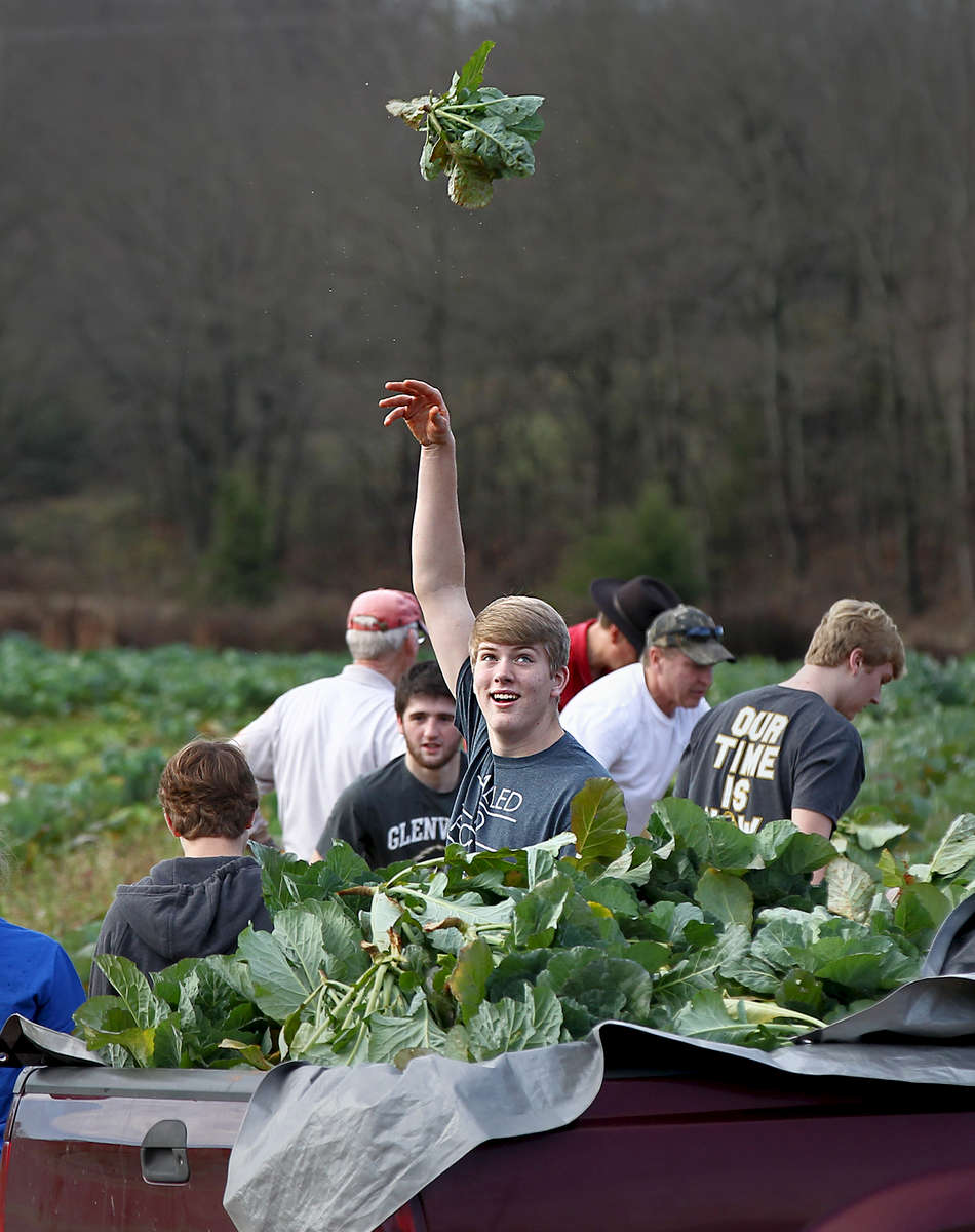 Honorable Mention I FeatureKen Ruinard, Anderson Independent MailSam Eaves tosses a cut collard green, like a basketball hook shot in basketball, into the back of a truck at Denver Downs Farm in Anderson. Eaves and a group of youth from First Baptist Church in Anderson collect the greens they cut for the New Year Day free meal. {quote}Collards in the basket{quote} 12/25/15)