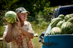 Photographer of the Year Andrew Craft, The Fayetteville ObserverJimmy Grimsley carries a watermelon to a customer's car Friday, Sept. 4, 2015, in Fayetteville, N.C. Grimsley has been selling watermelons since his was six when he would help his father.