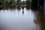 Honorable Mention | Spot News Eamon Queeney, North State Journal Chris Blackman wades through flooded Cedar Street in Lumberton, NC, as he heads to his family home of 54 years, Wednesday, October 12, 2016. Blackman had to wade back and forth through chest deep water to come and go. He said only three inches of water in the house and was mostly concerned about his pets and the boxing gym in the backyard. Historic flooding hit much of eastern North Carolina after Hurricane Matthew's rain pummeled an already soggy state. Parts of Lumberton where hit so badly residents had to be rescued by helicopters while others said it is the worse they have seen in their lifetime.