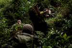 Second Place | News Photo Story Andrew Craft, The Fayetteville ObserverAn American Special Forces soldiers and Ugandan People's Defense Force (UPDF) soldiers trek through the jungle on Tuesday, March 29, 2016, in the Central African Republic.