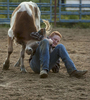 Second Place | Feature Photo StoryChristine Nguyen, North State Journal Clay Livengood of Cleveland wrestles a steer during the junior high chute dogging event. Chute dogging is an event similar to steer wrestling.