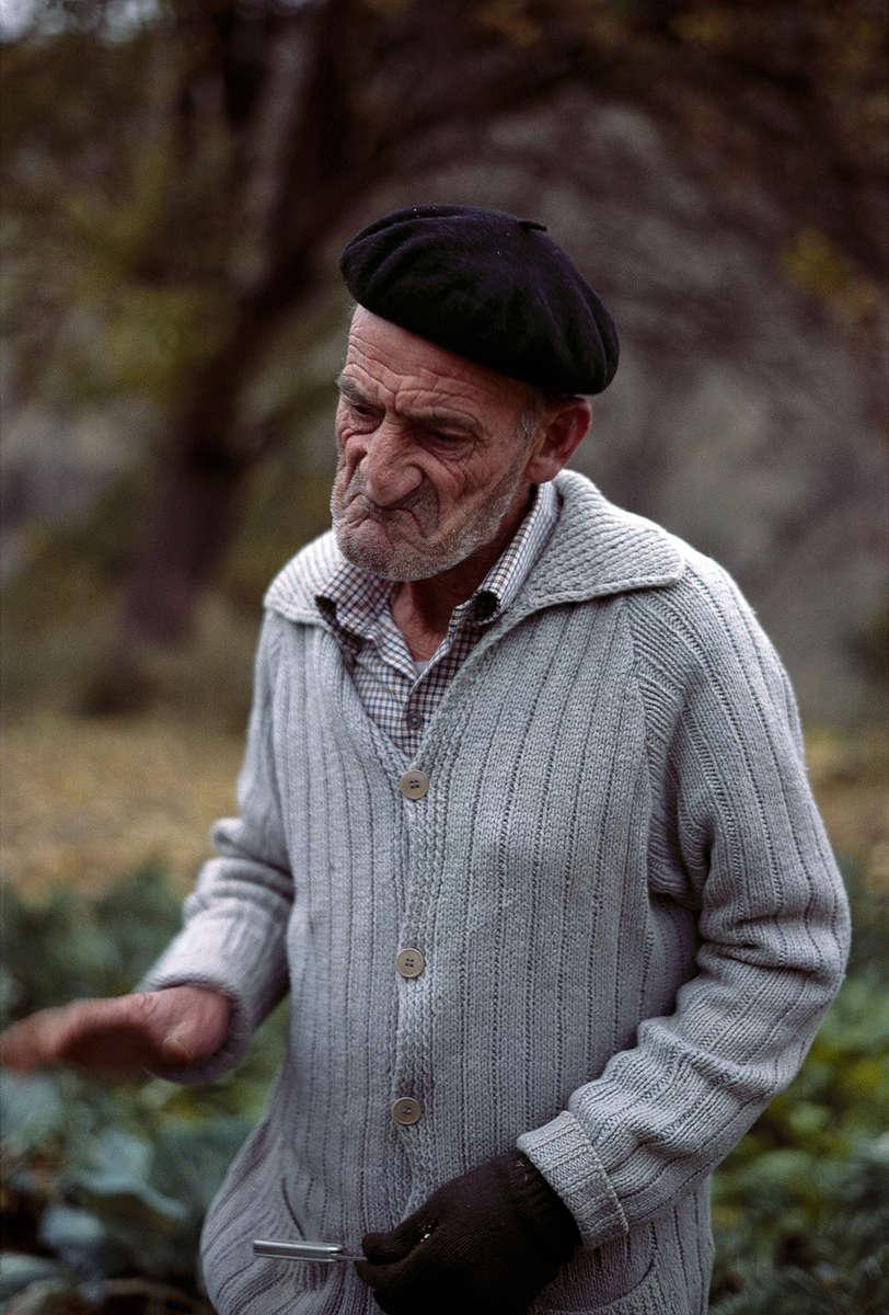 Jóse in his Cabbage Patch · Sorbas, Almería