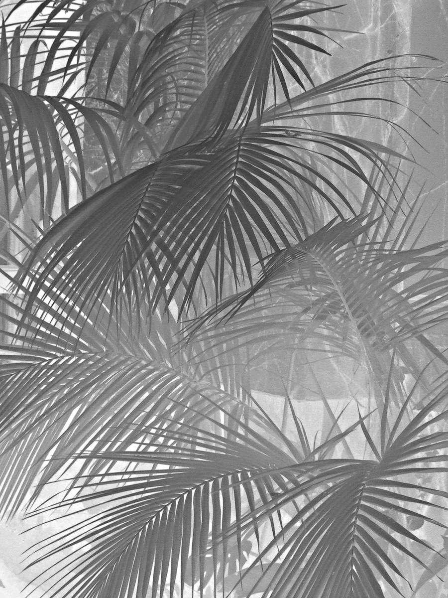 Marbella Club Hotel · Fine Art Collection