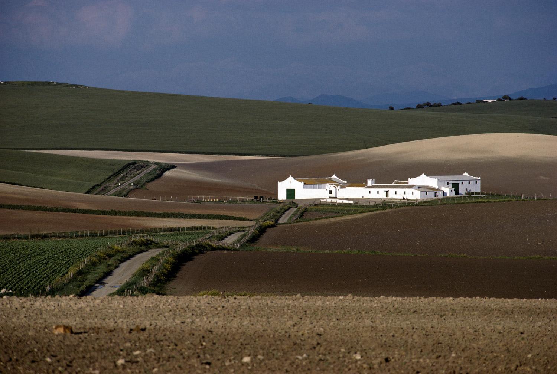 Country Home · Medina Sidonia, Cadíz