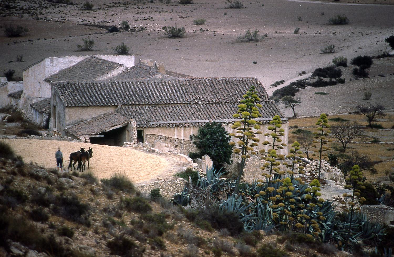 Threshing · Sierra Cabrera, Almería