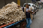 A man takes a cigarette break while selling garlic at the market in Istanbul.