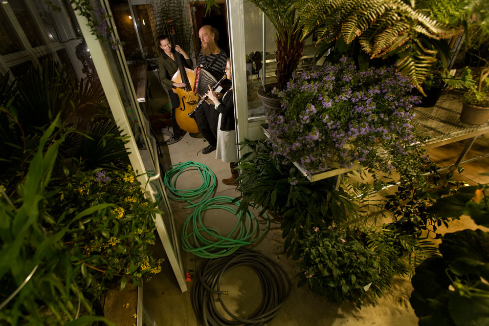 The Marsh Garden Irregulars perform inside a greenhouse at Yale University's {quote}Music in the Garden{quote} monthly event. Yale Alumni Magazine.