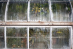 One of the greenhouses seen from the outside at the Marsh Botanical Gardens.