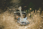 dae-engagement-session-nature-music-france-mountains-guitar-wedding-photographer-adrian-hancu_18