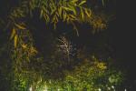 iow-focuri-de-artificii-la-nunta-moldova-chisinau-fotograf-adrian-hancu-29