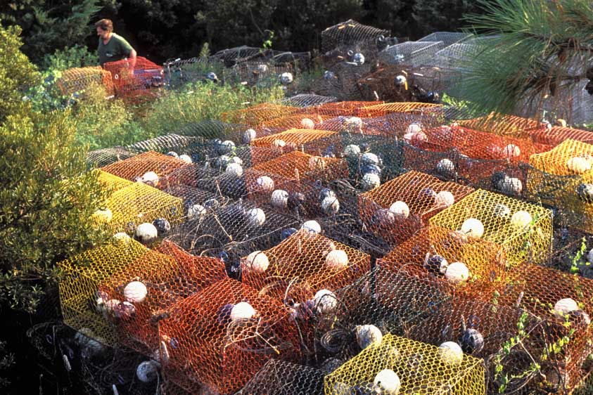 stacks of crab pots beside fishery on Ocracoke Island, North Carolina