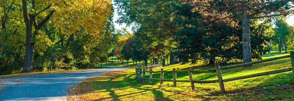 Autumn drive #1