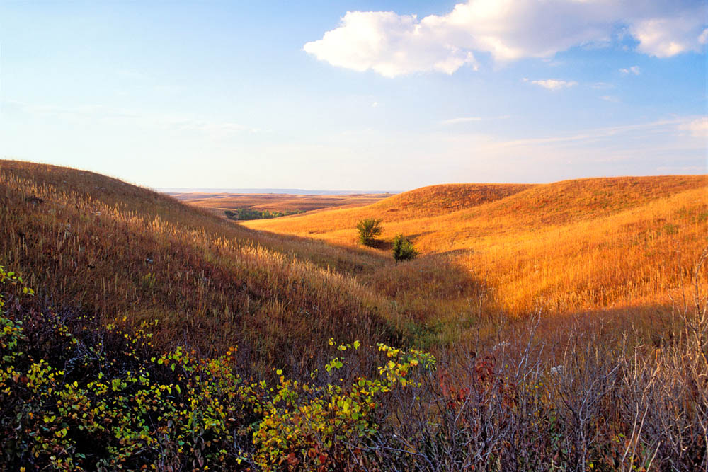 Photo of Autumn Prairie Landscape