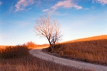 Backroad_in_Wabaunsee_County