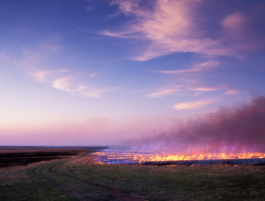 Photograph entitled Prairie burn at dusk