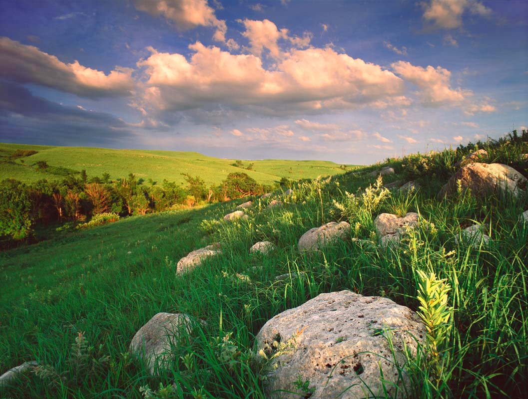 Kansas Flint Hills in summer