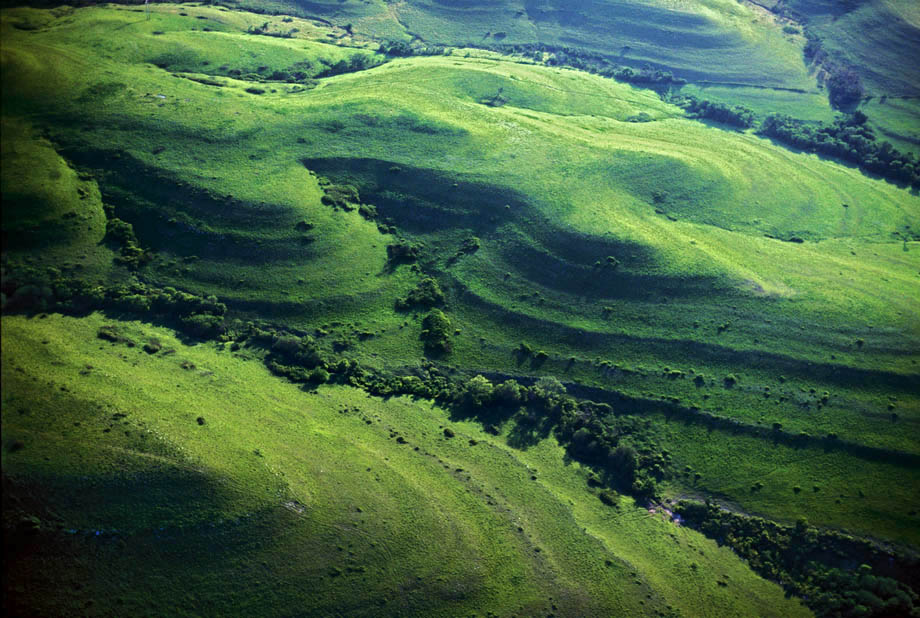 Photograph entitled Green Flint Hills of Kansas in summer