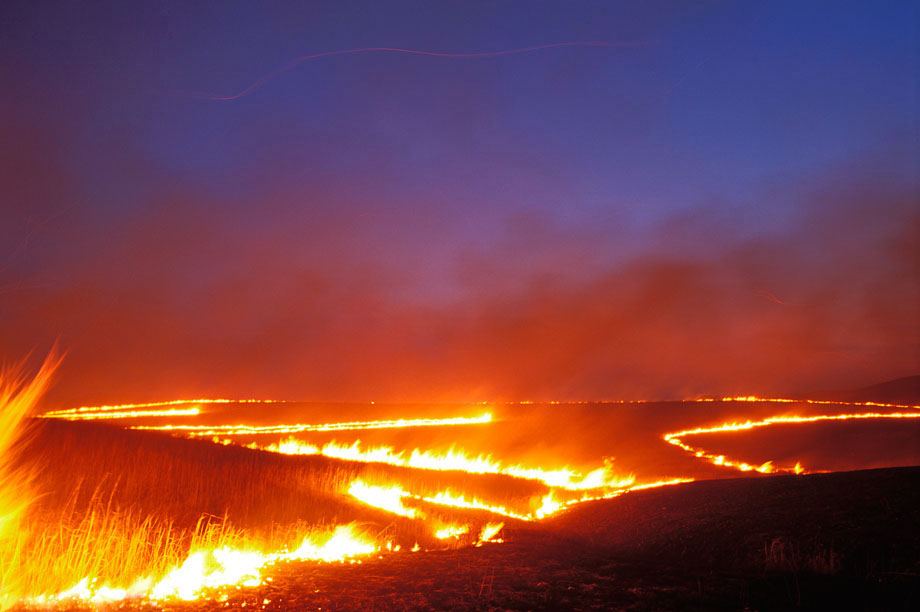 Photograph entitled Lines of burning tallgrass, Kansas Flint Hills