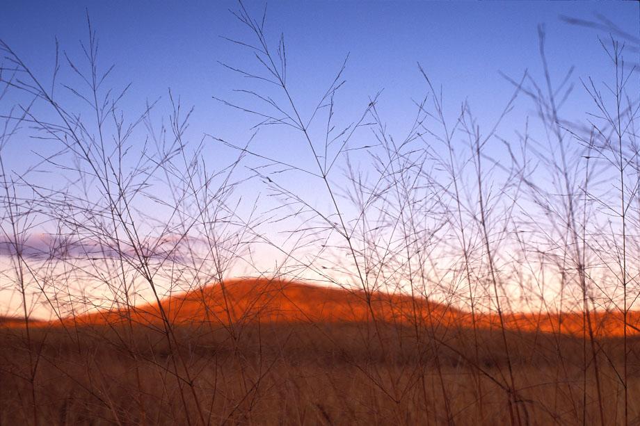 Photograph entitled Winter prairie at dusk, Kansas Flint Hills