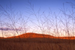 Photograph entitled Winter prairie at dusk, Kansas Flint Hills