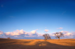 Photograph entitled Blue sky, winter prairie