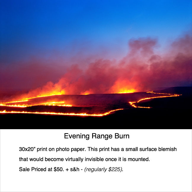 Print_sale_Eve_range_burn2