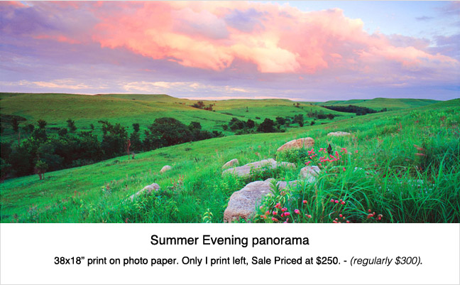 Print_sale_summer_pano