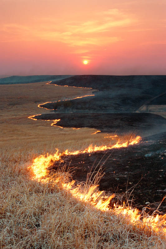 Photograph entitled Spring range burn in the Flint Hills